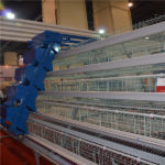 A-type battery cage for layers have the automatic feeding machine.