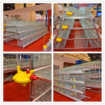 Baby chicken cage is good for poultry farmers.
