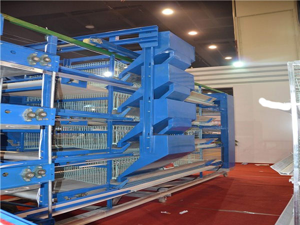 H-type 4 tier layer chicken cgae with ladder type feeding machine is convenient for poultry farm.