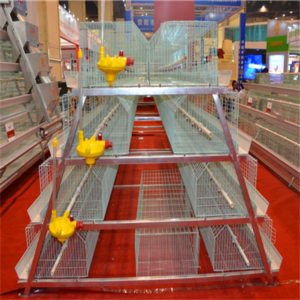 baby chick battery cage is the perfect cage system.