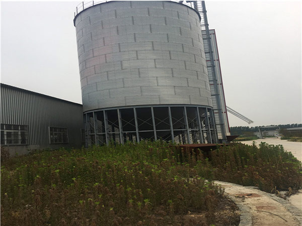 Feed silo cxan store bulk of grain material for large scale poultry farm.