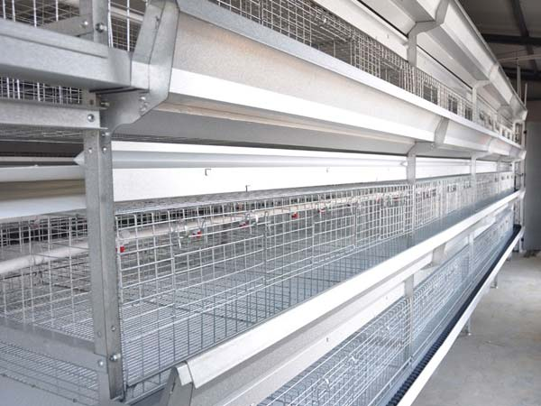broiler batteryt cages is good for broiler farming.
