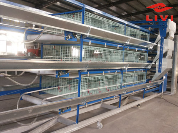 Our poultry farming equipment mainly includes H-type broiler battery cage system.