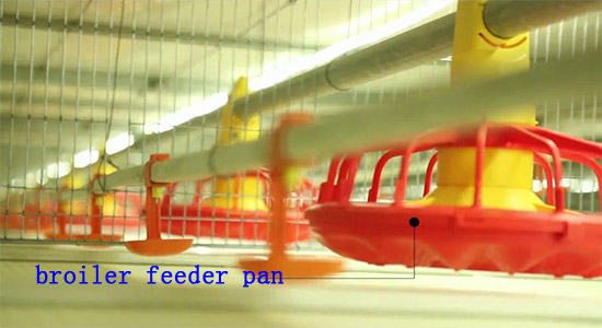 Broiler chicken feeder pan in Livi Mchinery are automatic.