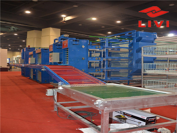Egg collection system in Livi Machinery are the most useful accessories for layer cage equipment.