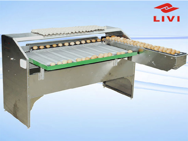 Egg grader have the most advanced technology available and with superior labour efficiency and low parts usage