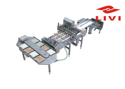 Egg processing equipment are the good products for poultry farming industry.