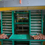The egg collector of chicken farm automation equipment is an important machine to save much of time and bring up lots of convenience.