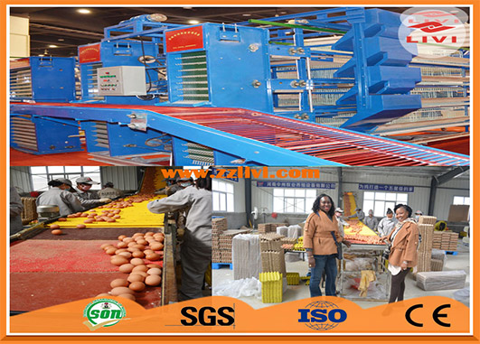 Our battery cage of layer cage appeal to many clients for the features of automatic and high quality.