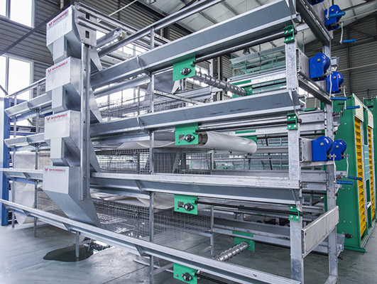 Chicken layer cages for sale in Livi Machinery have many features of automation and low cost.