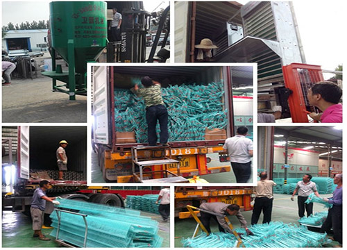 Poultry farm equipment of Livi Machinery is ready for shipment.